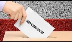 Referendum ed elezioni